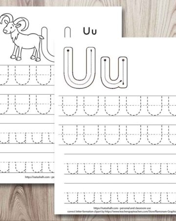 two printable letter u tracing worksheets with uppercase and lowercase letter u's to trace. One worksheet has correct letter formation graphics and the other has a urial goat to color. Both have two lines each of uppercase and lowercase letter u to trace.