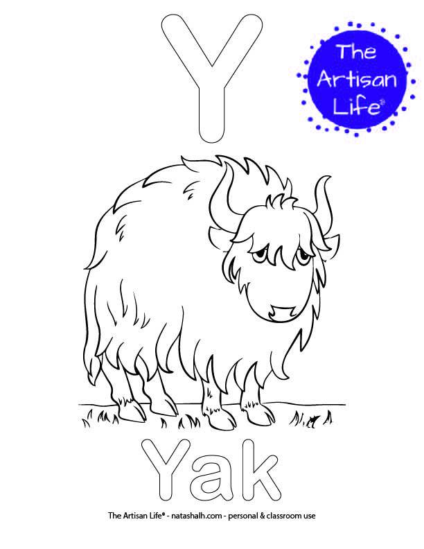 Coloring page with Y and Yak in bubble letters and a picture of a yak to color