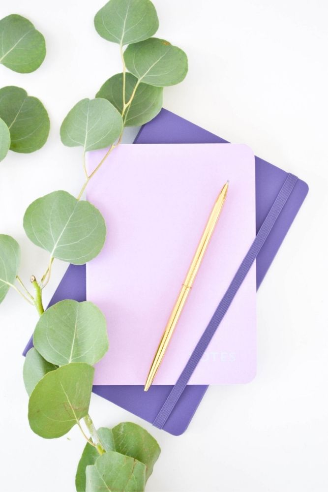 A picture of two purple journals and a gold pen with a piece of greenery on a white surface