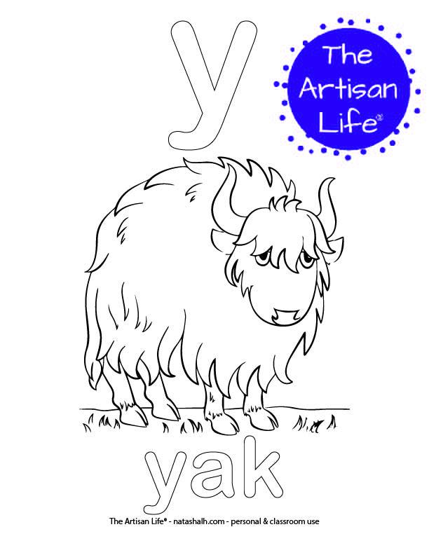 Coloring page with a lowercase bubble letter y and yak in bubble letters and a picture of a yak to color