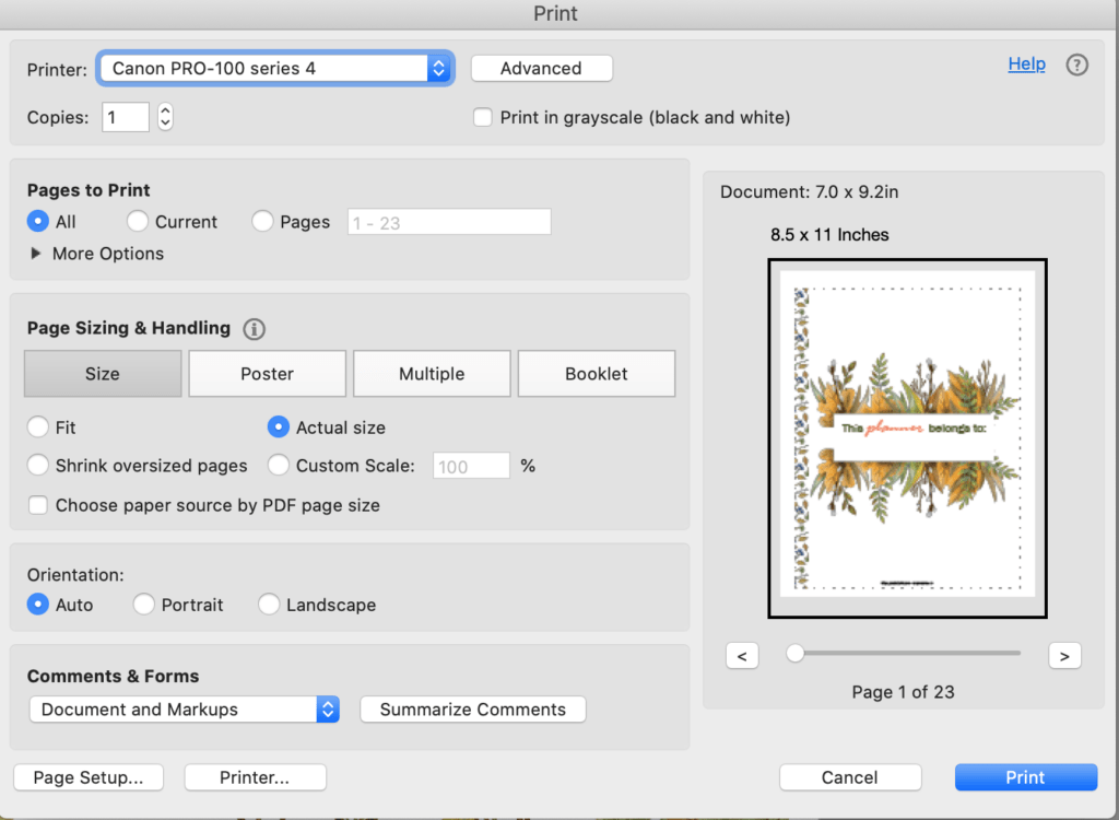 An Acrobat Reader print dialogue box showing printing a watercolor November planner insert for Happy Planner Classic at 100% size