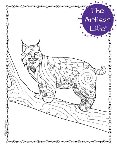 """A preview of a bobcat coloring page for adults. The bobcat is standing on a tree branch has hand drawn doodles to color and the page is bordered by a doodle frame. A purple round logo reading """"the artisan life®"""" is in the corner."""
