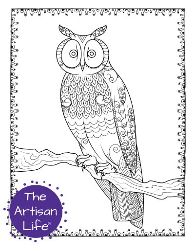 """A preview of an owl coloring page for adults. The owl has hand drawn doodles to color and the page is bordered by a doodle frame. A purple round logo reading """"the artisan life®"""" is in the corner."""