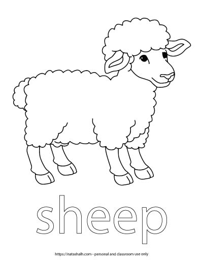 "A child's coloring page with an image of a sheep and the word ""sheep"" in bubble letters to color"