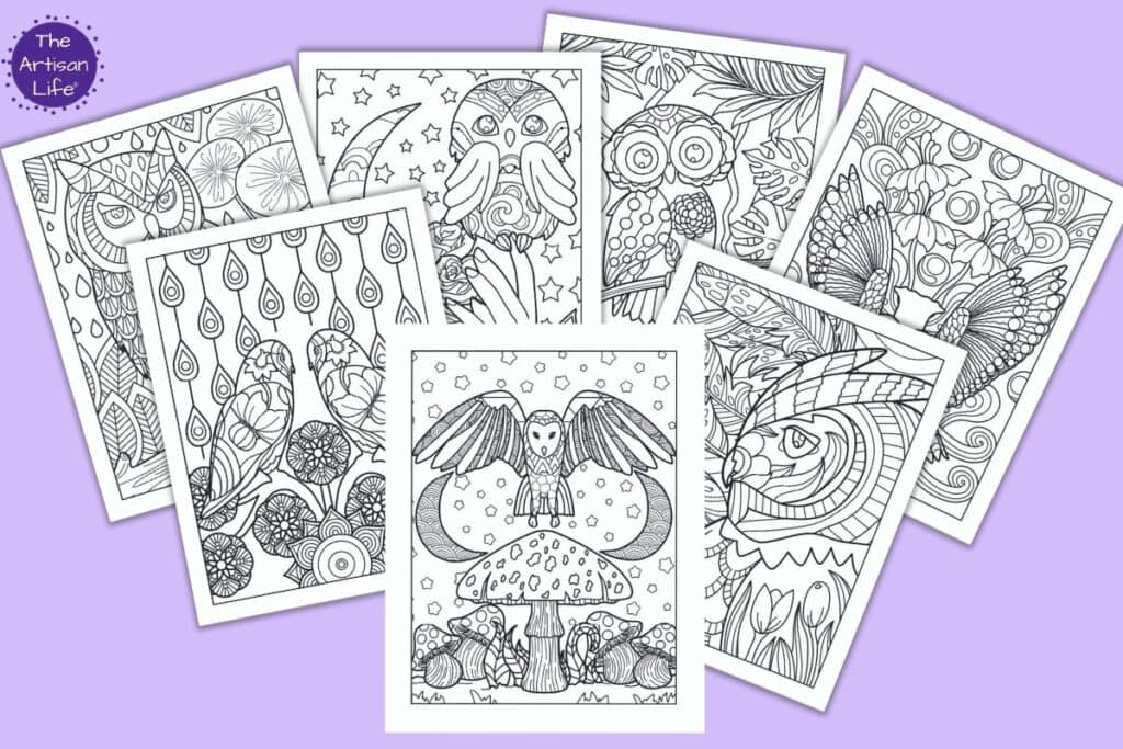 Free Printable Owl Coloring Pages For Adults - The Artisan Life