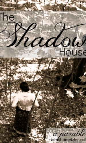 The Shadow House by @natashametzler