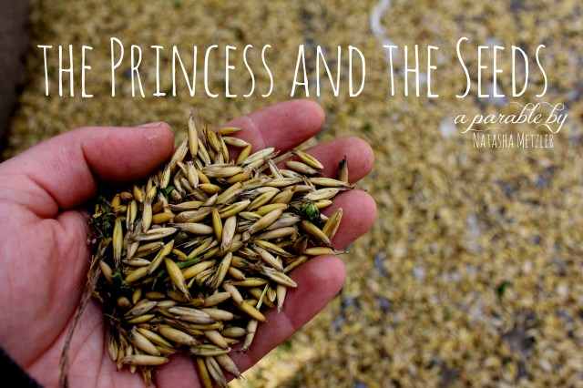 the princess and the seeds (a parable)