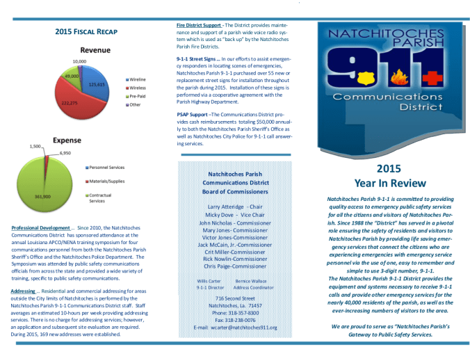 2015 911 Annual Report Page 1