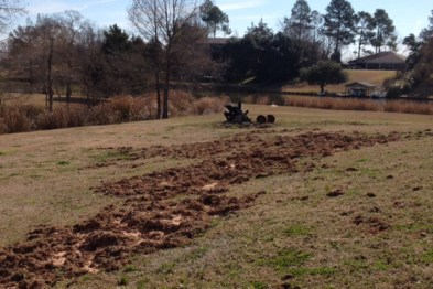 damage-to-land-from-feral-hogs