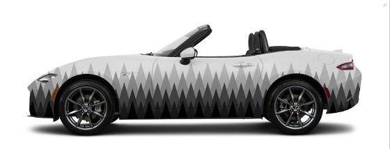 art-car-2017