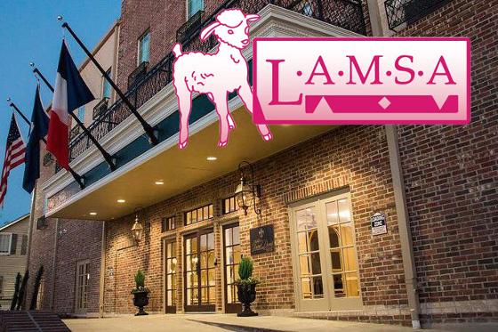 LAMSA at Hotel