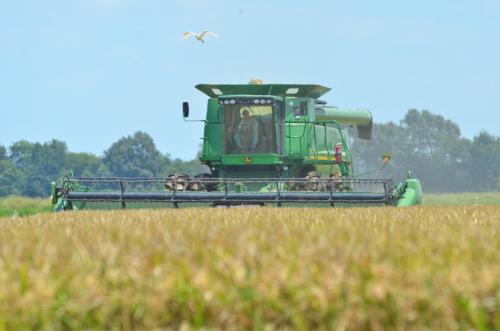LSU Ag Farming.jpg