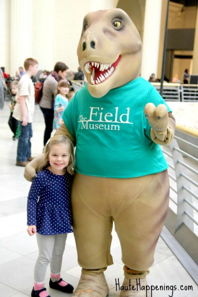 7 reasons to take the kids to visit the Chicago Field Museum!