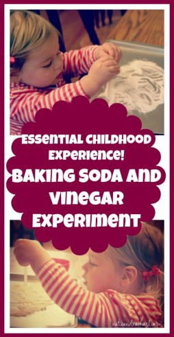 science experiment for toddlers and preschoolers