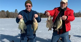 The Panfish are Going Ballistic in the Brainerd Lakes Area