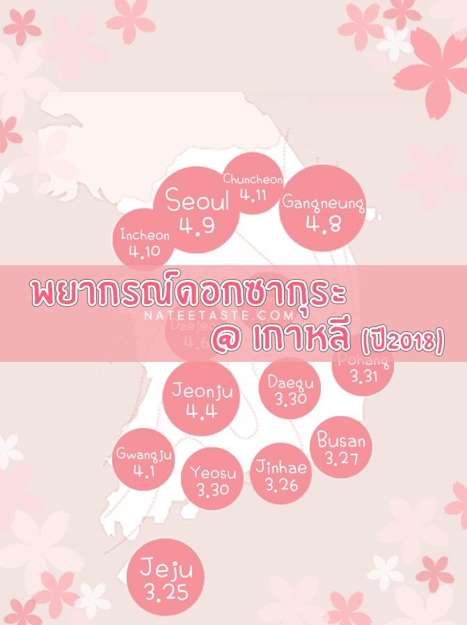 พยากรณ์ดอกพ็อดกด : 벚꽃 (ดอกซากุระเกาหลี) ประจำปี 2018