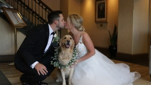 Puppy poses with bride and groom on wedding day