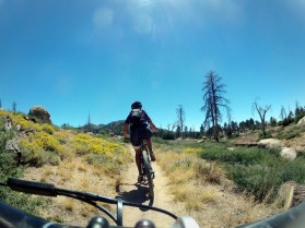 Sam laying down a fun tempo on Hanna Flat singletrack.