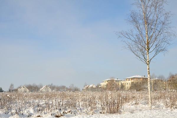 Das freie Baufeld im Norden, Reihenhäuser im Westen, Mietshäuser im Norden.