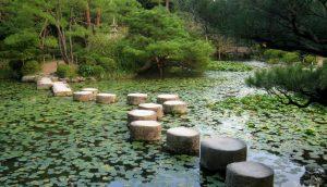 Pas japonais trvaersant un étang. Je vous accompagne pas à pas sur les réseaux sociaux numériques