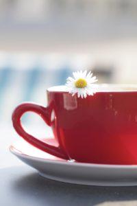 Tasse de thé et marguerite