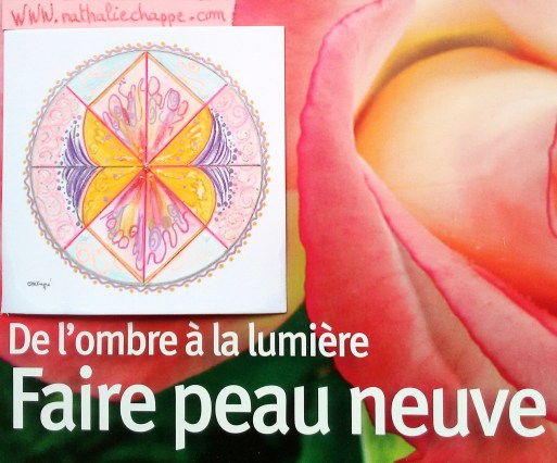 52.graine de mandala Nathalie Chappé
