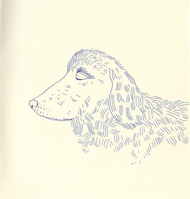 BLEU-chien-1-by-nathalie_desforges