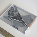 Bird Box Set Photo 01