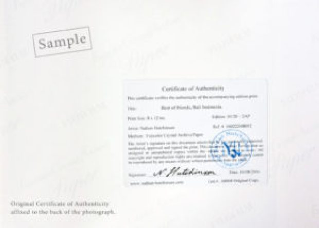 Buying photographic prints. Certificate of Authenticity for photograph print.
