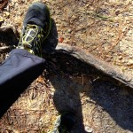 Salomon Sense Mantra trail shoes