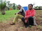 Farmers, Ashanti Region, Ghana