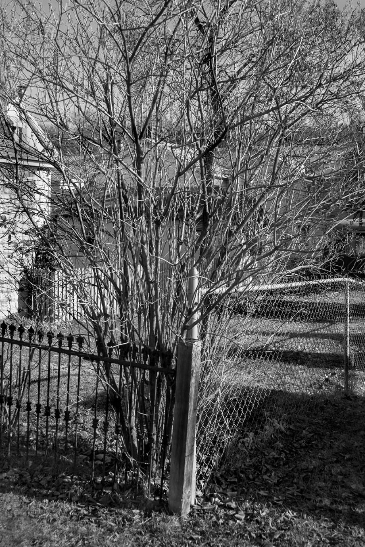 Uncentered #15, Digital Photograph