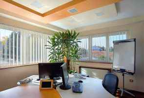 Modern office with 2 monitoros and a keyboard on the desk. Two walls of windows with a large plant in the corner.