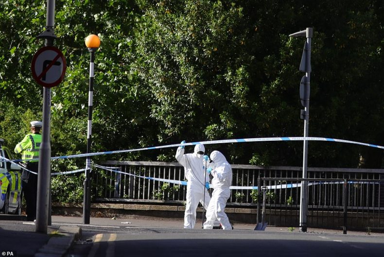 Khairi Saadallah, 25, has been arrested for the rampage. Forensic officers work near Forbury Gardens, in Reading town centre