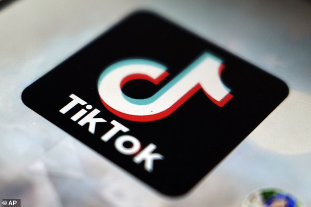 Chinese digital services that operate in the United States have also drawn the attention of American regulators over fears they pose a security risk. The logo for TikTok is seen above