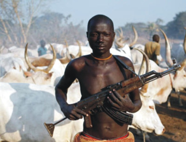 Fulani herdsmen: Terrorists or land grabbers? | giantability |