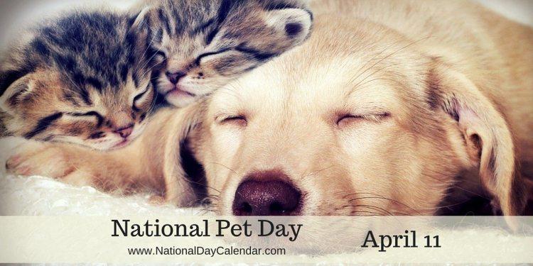 National Pet Day - April 11
