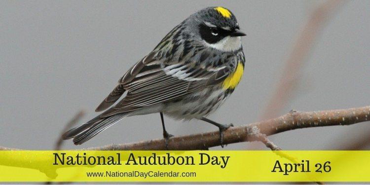 National Audubon Day - April 26