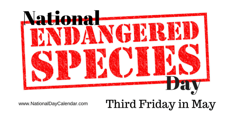 National Endangered Species Day Third Friday in May