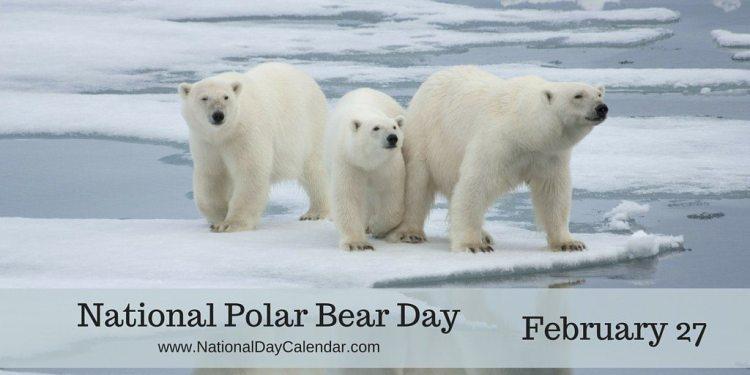 National Polar Bear Day February 27 National Day Calendar