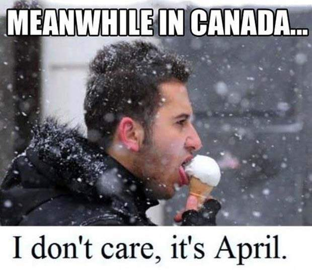 memes on Canada Day