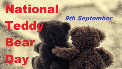 National Teddy Bear Day CoverPhoto