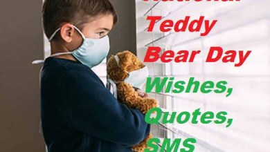 Teddy Bear Day Wishes, Quotes