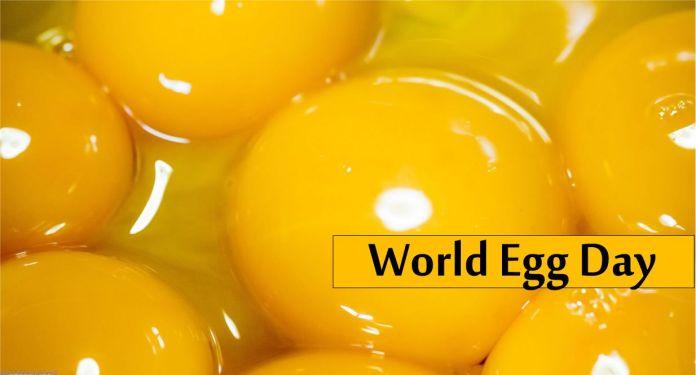 International Egg Day