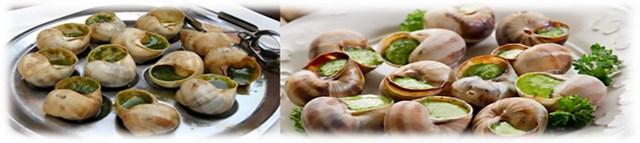 8 escargot – france