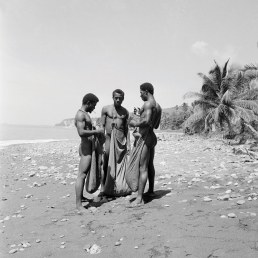 Archie Lindo - The Irish Moss Gatherers (1950), Collection: NGJ (in acquisition)
