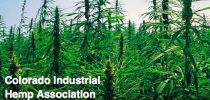 Connecting with State Hemp Organizations