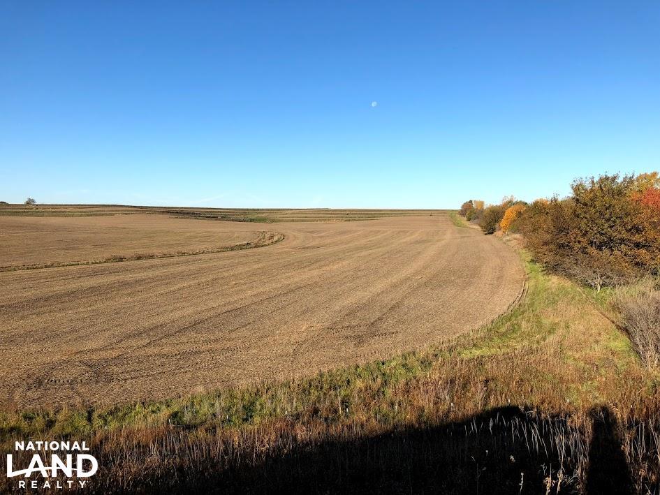 Red Oak Evergreen Avenue Farmland