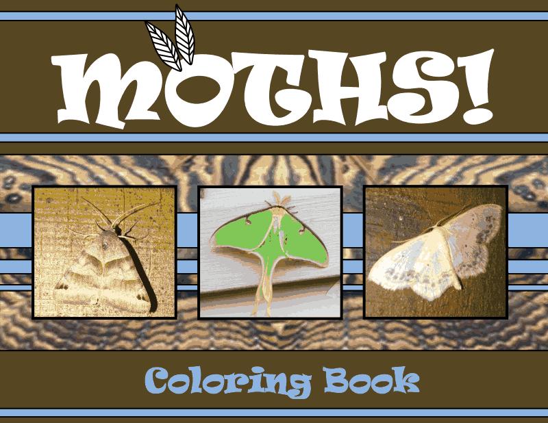 moths and kids national moth week