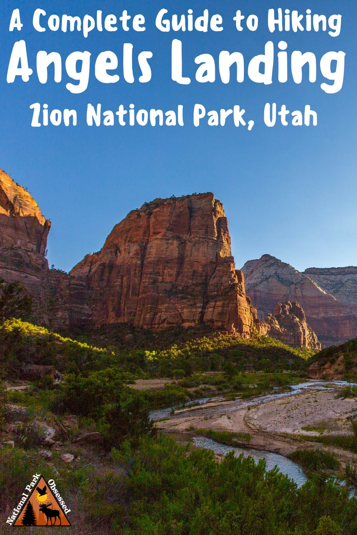 Are you ready for the scariest hike in the United States?  Hiking Angels Landing in Zion National Park is one of the most amazing adventures in the parks.  #nationalparkobsessed #utah #nationalparks #nationalpark #findyourpark #nationalparkgreek #zion #zionnationalpark #zionnps #mighty5 #utah5 #utahrocks